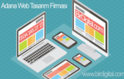 Adana Web Design Firm
